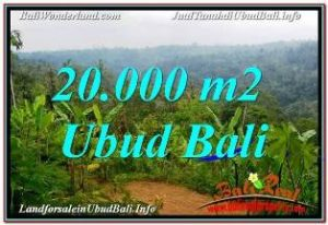 LAND SALE IN UBUD TJUB678