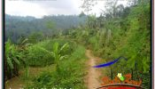 Magnificent LAND SALE IN UBUD BALI TJUB678