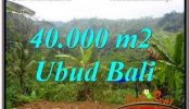Affordable 40,000 m2 LAND SALE IN UBUD PAYANGAN TJUB679