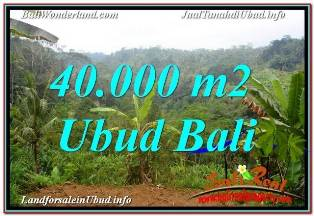 Affordable 40,000 m2 LAND IN UBUD PAYANGAN FOR SALE TJUB679