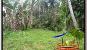 Beautiful 40,000 m2 LAND SALE IN UBUD PAYANGAN BALI TJUB679