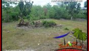 Affordable 2,000 m2 LAND FOR SALE IN JIMBARAN UNGASAN TJJI133B