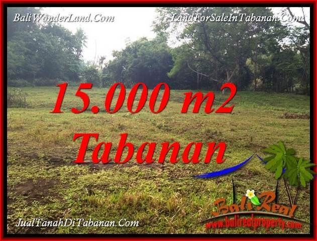Cheap property 15,000 m2 LAND FOR SALE IN TABANAN KOTA BALI TJTB381