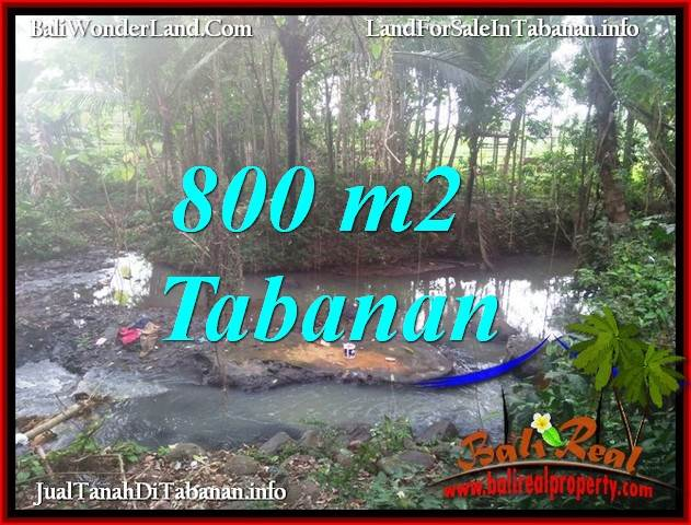 Beautiful 800 m2 LAND SALE IN TABANAN SELEMADEG BALI TJTB384