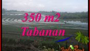 FOR SALE Affordable PROPERTY LAND IN TABANAN BALI TJTB386