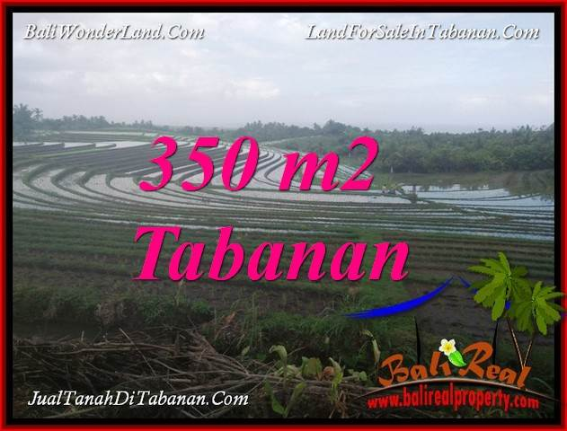 Affordable 350 m2 LAND FOR SALE IN TABANAN SELEMADEG BALI TJTB386