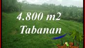 FOR SALE Exotic LAND IN TABANAN SELEMADEG TJTB387