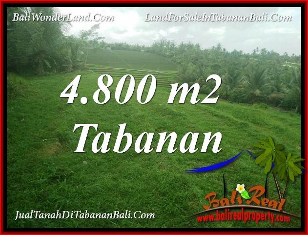 Cheap property 4,800 m2 LAND FOR SALE IN TABANAN BALI TJTB387