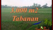 Exotic PROPERTY LAND FOR SALE IN TABANAN SELEMADEG BALI TJTB389