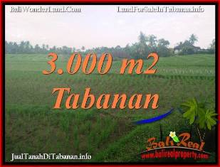Beautiful PROPERTY 3,000 m2 LAND SALE IN TABANAN BALI TJTB389