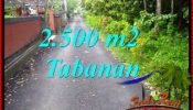 Exotic LAND FOR SALE IN TABANAN SELEMADEG TJTB391