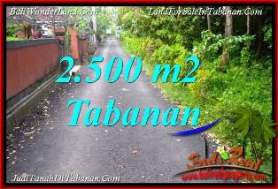 FOR SALE Affordable 2,500 m2 LAND IN TABANAN SELEMADEG BALI TJTB391