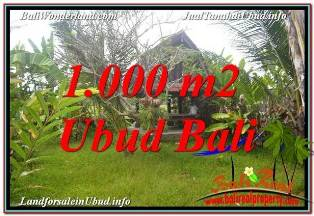 Magnificent PROPERTY SENTRAL UBUD BALI 1,000 m2 LAND FOR SALE TJUB680