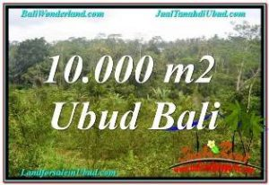 Beautiful LAND FOR SALE IN UBUD TJUB681