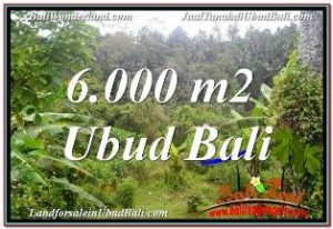 FOR SALE Beautiful 6,000 m2 LAND IN UBUD BALI TJUB682