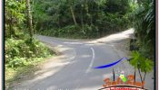 Beautiful PROPERTY 6,000 m2 LAND FOR SALE IN UBUD TEGALALANG BALI TJUB682