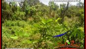 Magnificent PROPERTY LAND IN JIMBARAN BALI FOR SALE TJJI128