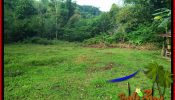 FOR SALE Magnificent LAND IN TABANAN TJTB381