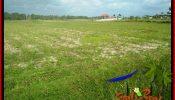 3,750 m2 LAND IN TABANAN SELEMADEG BALI FOR SALE TJTB382