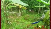 Cheap property 800 m2 LAND FOR SALE IN TABANAN TJTB384