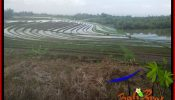LAND IN TABANAN BALI FOR SALE TJTB386