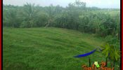 FOR SALE 4,800 m2 LAND IN TABANAN BALI TJTB387