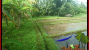 Exotic 3,700 m2 LAND FOR SALE IN TABANAN SELEMADEG BALI TJTB388