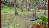 TABANAN SELEMADEG 7,500 m2 LAND FOR SALE TJTB390