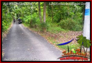 Beautiful PROPERTY 2,500 m2 LAND FOR SALE IN TABANAN BALI TJTB391