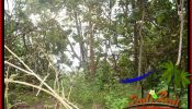 FOR SALE Magnificent PROPERTY LAND IN TABANAN BALI TJTB392
