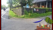Exotic PROPERTY TABANAN 2,100 m2 LAND FOR SALE TJTB393