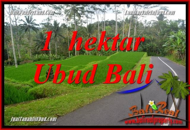 Beautiful Property Land sale in Ubud Bali TJUB683