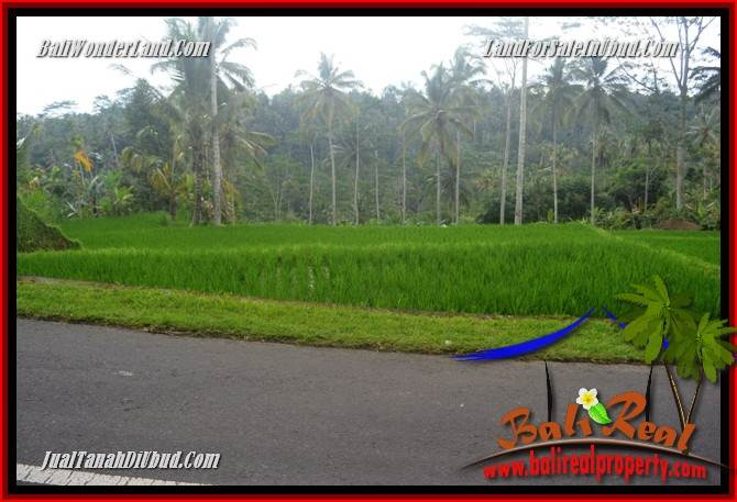 FOR sale Land in Ubud Tegalalang Bali TJUB683