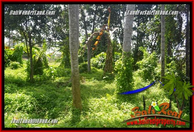 Beautiful Property Land for sale in Ubud Bali TJUB684