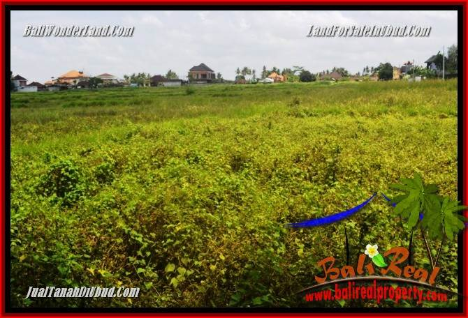 Exotic Land for sale in Ubud TJUB685