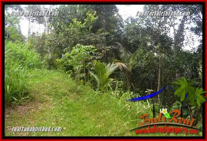 Exotic Property Ubud Gianyar 9,400 m2 Land for sale TJUB686