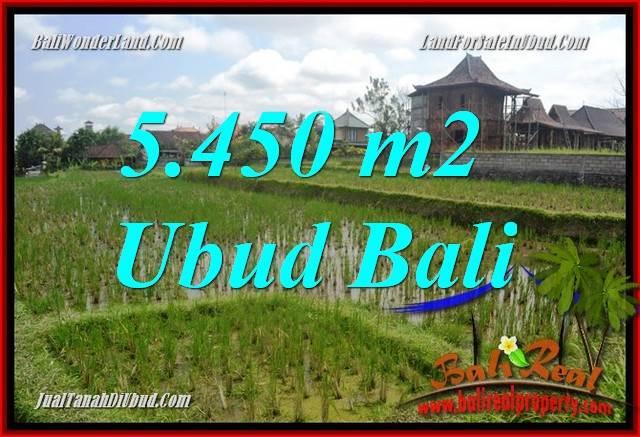 Beautiful Sentral Ubud Bali 5,450 m2 Land for sale TJUB688