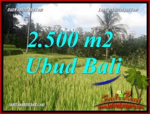 Beautiful Ubud Land for sale TJUB690
