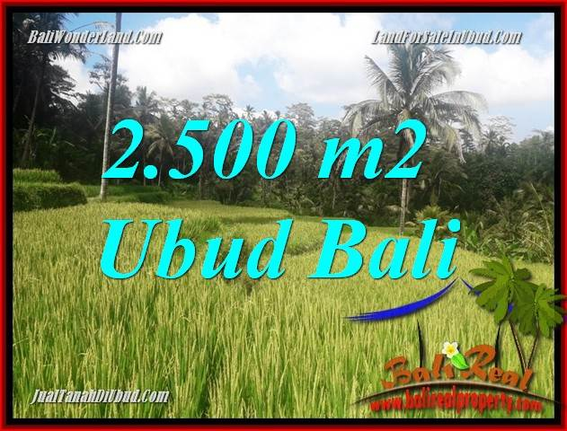 Beautiful Property Land sale in Ubud Bali TJUB690