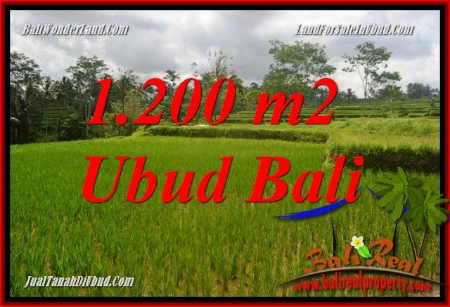 FOR sale 1,200 m2 Land in Ubud Bali TJUB693