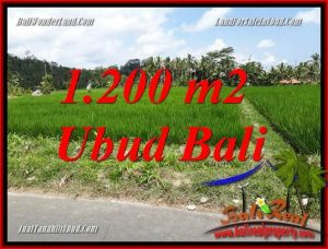 Exotic Property 1,200 m2 Land sale in Ubud Tampak Siring TJUB694