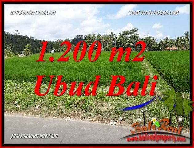 Beautiful Property Ubud Tampak Siring 1,200 m2 Land for sale TJUB694