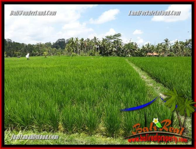 Exotic Property 1,200 m2 Land sale in Ubud Tampak Siring TJUB694