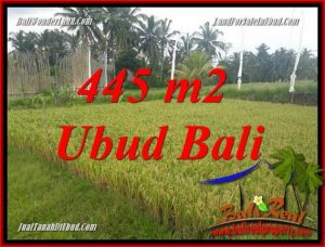 Magnificent 445 m2 Land in Ubud Pejeng for sale TJUB695