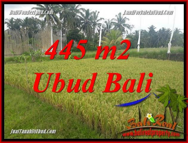 Exotic Property Ubud Bali Land for sale TJUB695