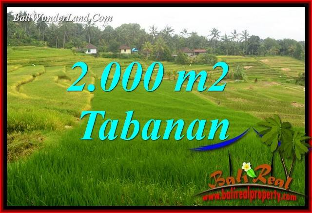 Magnificent Land sale in Tabanan Bali TJTB396