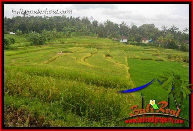 Affordable 2,000 m2 Land sale in Tabanan Bali TJTB396