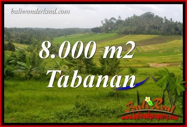 Magnificent Property 8,000 m2 Land in Tabanan Selemadeg for sale TJTB397