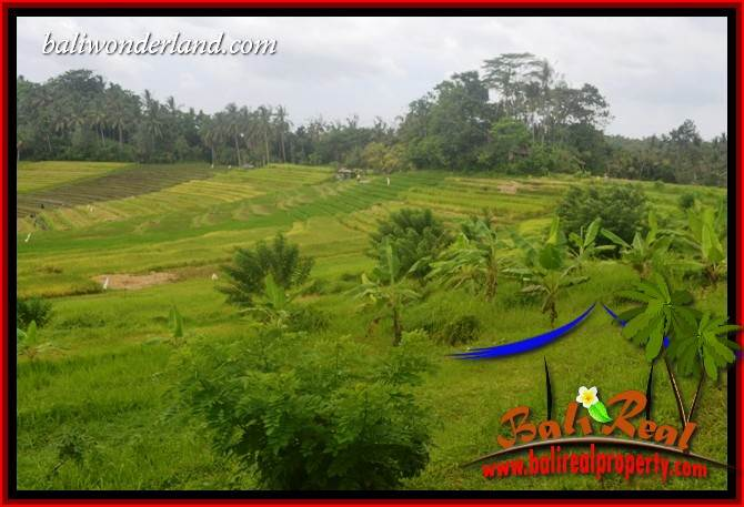 Exotic Land in Tabanan for sale TJTB397