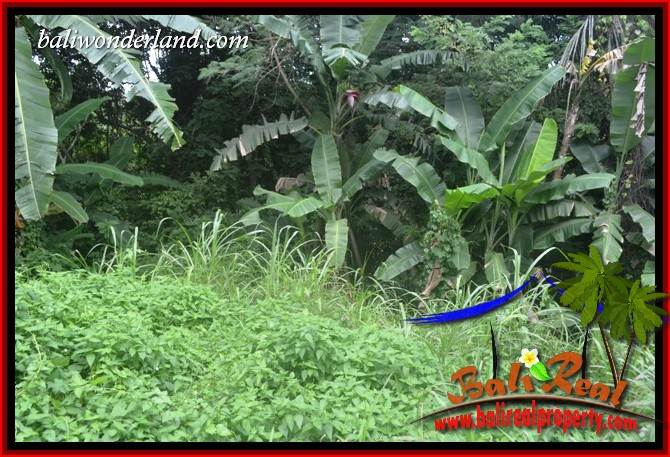 FOR sale Affordable 2,000 m2 Land in Tabanan Bali TJTB398